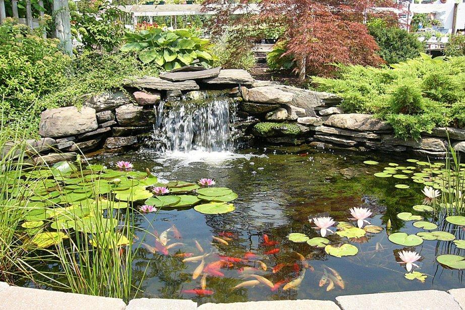 Un jardin bien con u un lieu qu 39 on habite gilles angers for Toile a bassin