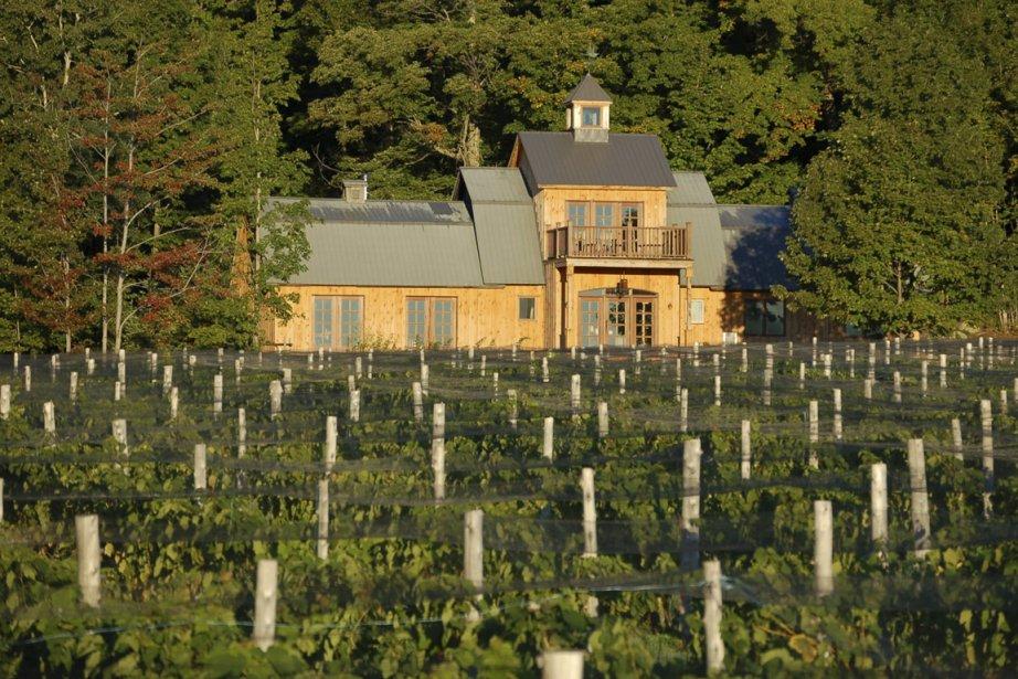 Le vignoble Le Domaine les Brome... (Photo: fournie par Tourisme Cantons-de-l'Est)