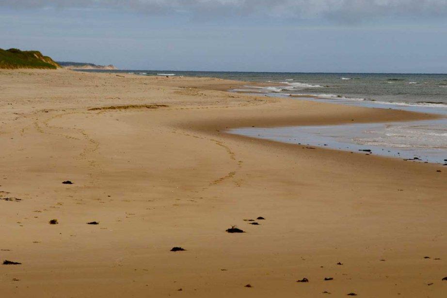 Il y a plusieurs moyens de visiter l'Île-du-Prince-Édouard.