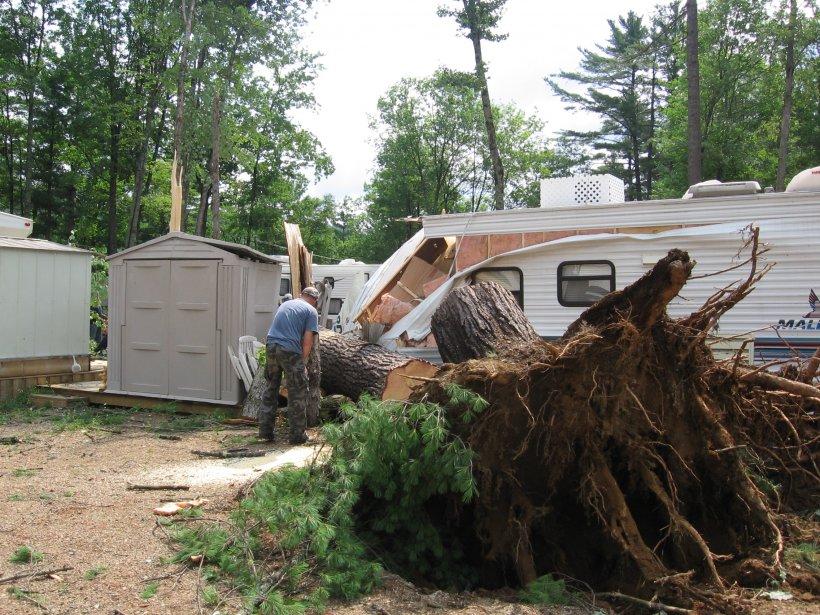 Le terrain de camping du Lac-Vert a été ravagé par les rafales, dimanche soir. De grands pins ont été déracinés. (Charles Thériault, LeDroit)