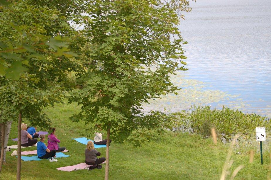 Des yogis assistent à un cours près du lac. (Émilie Bilodeau, La Presse)