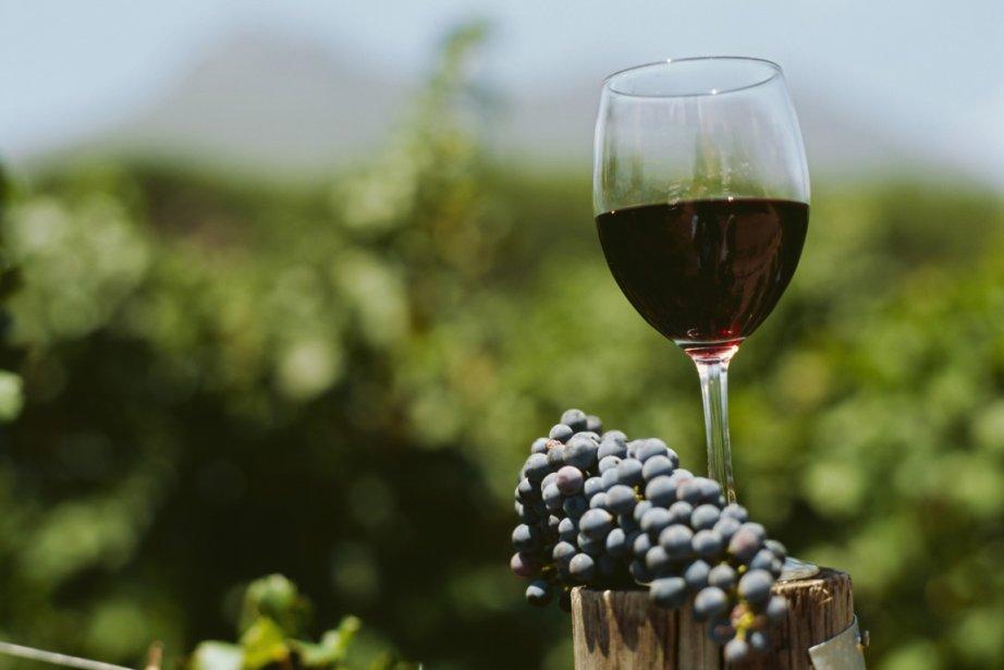 Le vin bio existe-t-il?... (Photos.com)