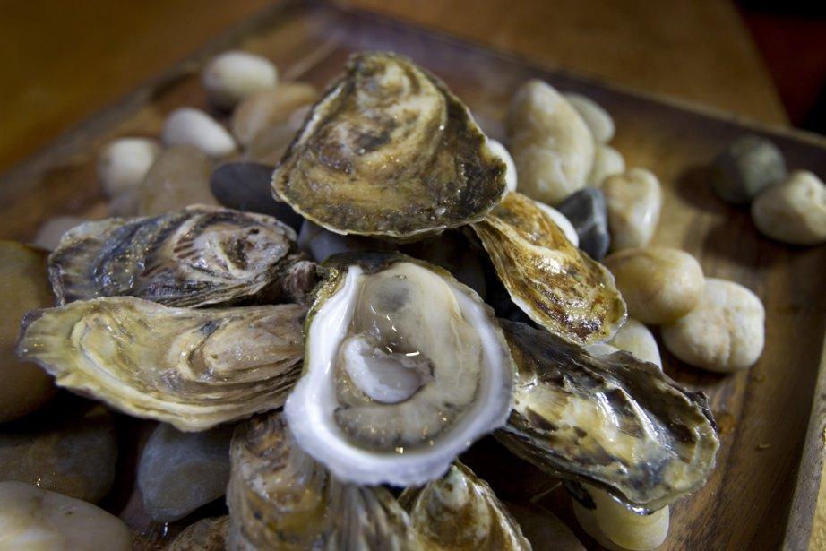 Les huîtres, ils connaissent. En fait, c'est... (Photo: Ivanoh Demers, La Presse)