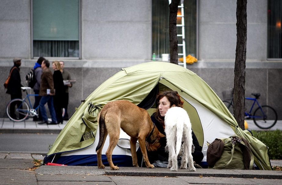 Les animaux de compagnie sont de la partie. (Photo: Marco Campanozzi)