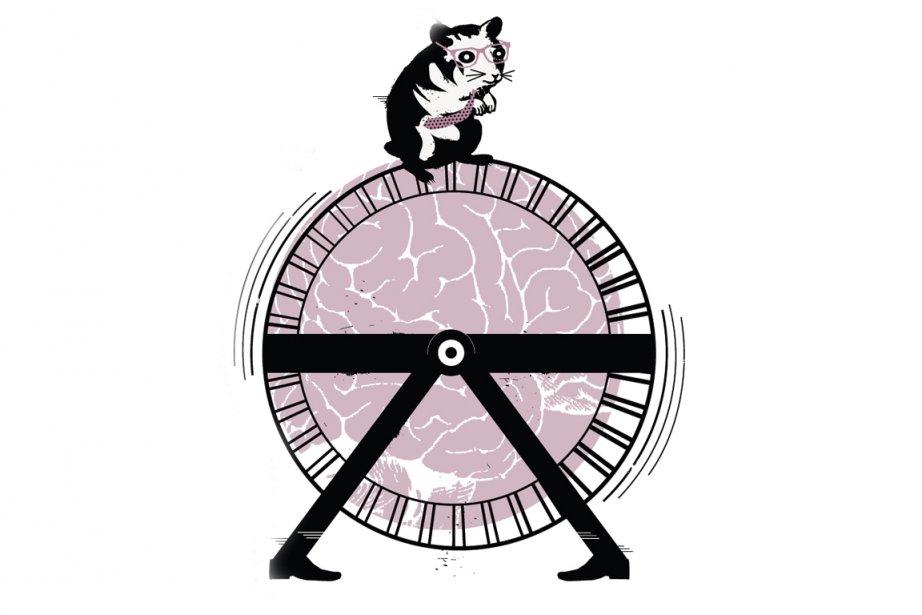 Petit traité de décroissance personnelle Pensouillard le hamster