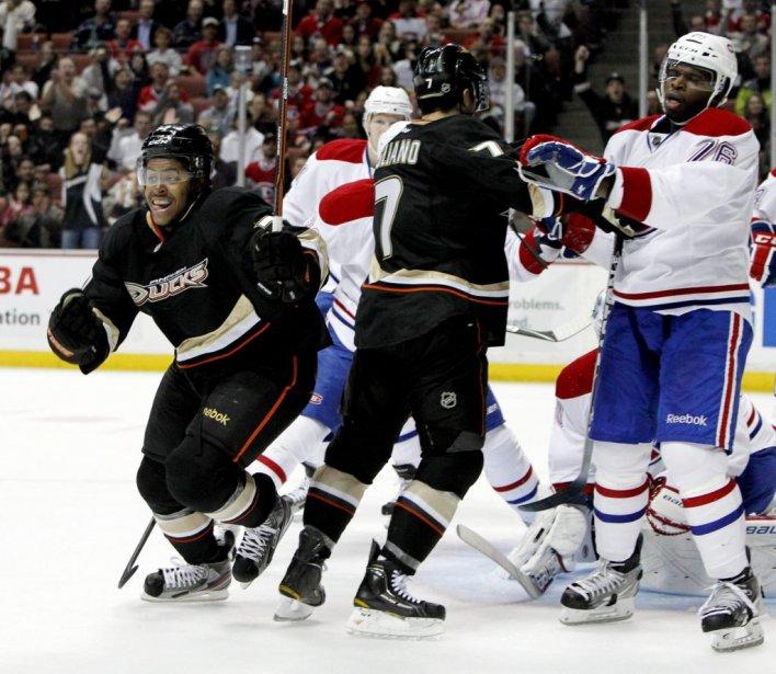 Devante Smith-Pelly des Ducks célèbre son deuxième but de la saison. | 1 décembre 2011