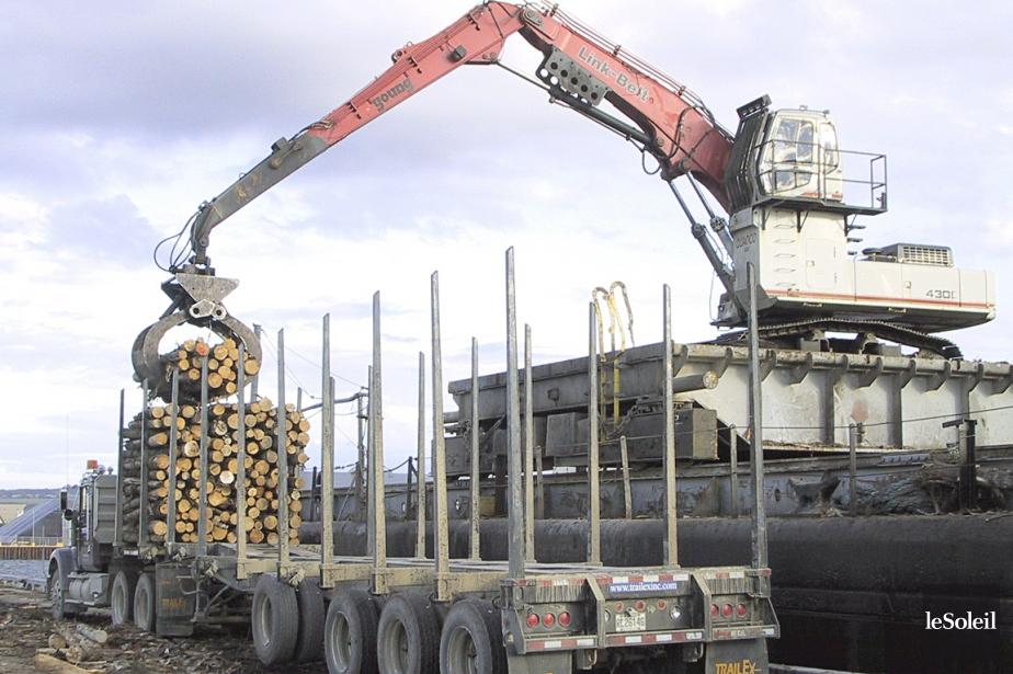 L'industrie forestière du Bas-Saint-Laurent.... (Photothèque Le Soleil)