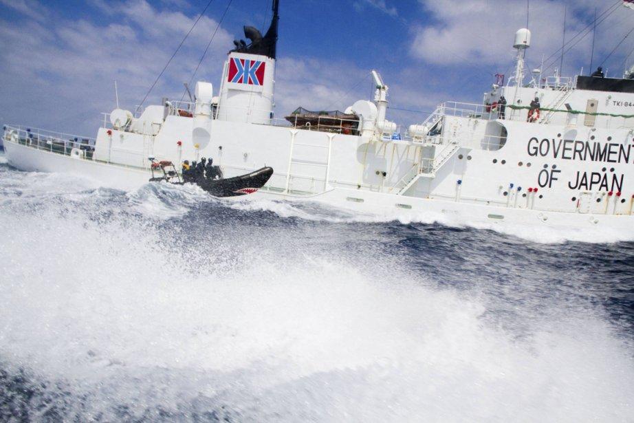 Trois membres australiens de l'ONG Forest Rescue Australia... (Photo: Sea Shepherd/Reuters)