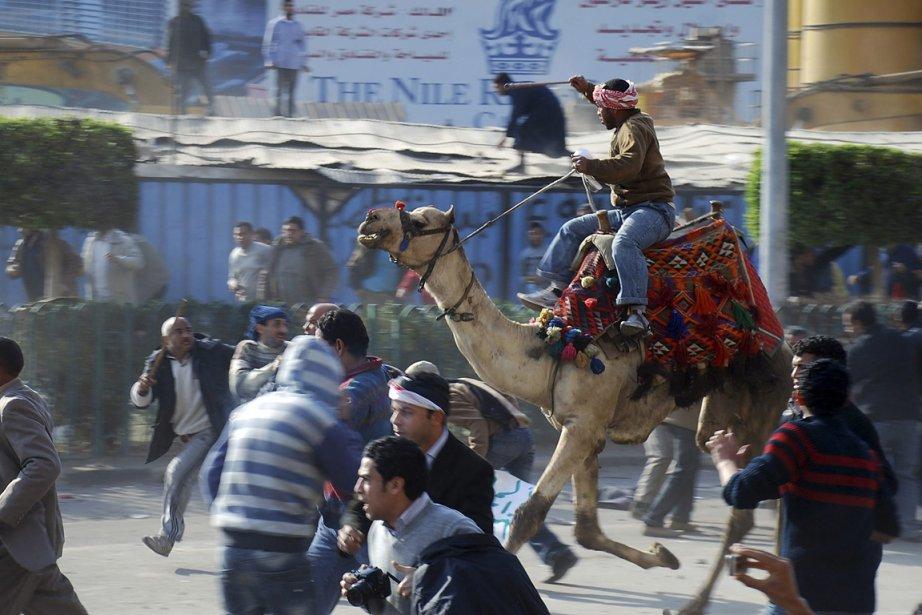 Le dromadaire: l?idée était bizarre et a fait long feu, mais elle a marqué les esprits: le 2 février 2011, des pro-Moubarak montés sur des dromadaires et des chevaux ont attaqué les manifestants réunis place Tahrir, au c?ur du Caire. À coups de gourdin et de couteau, les cavaliers ont blessé un demi-millier de personnes, sous l?oeil impassible des militaires. | 14 janvier 2012