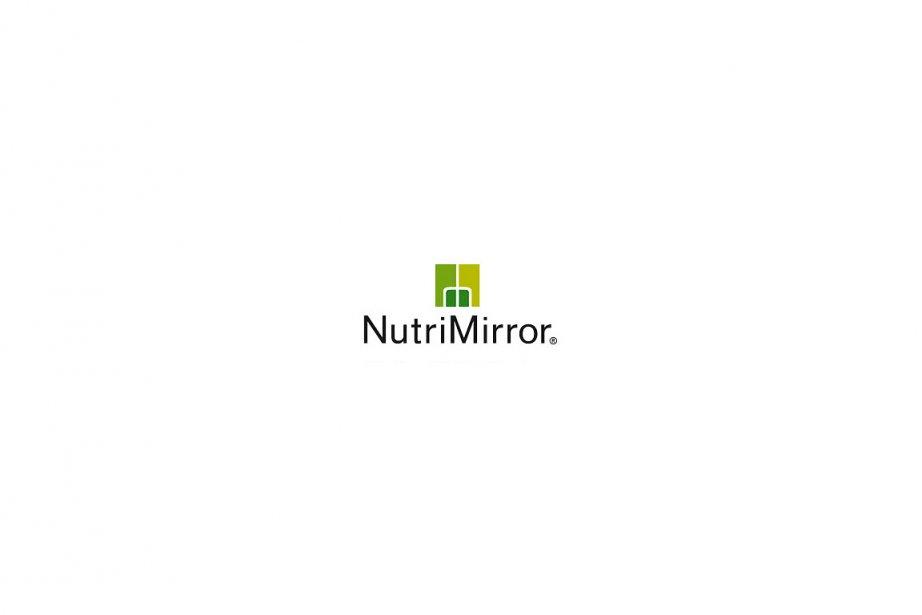 Mirror Modifier Paint Net