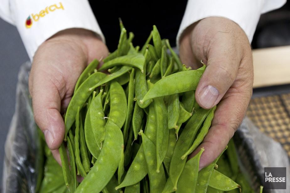Les pois mange-tout, crus, émincés et juste assaisonnés... (Photo: Édouard Plante-Fréchette, La Presse)