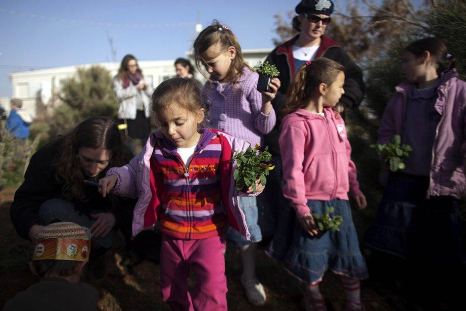 Des enfants de colons israéliens plantent des arbres... (Photo: AFP)