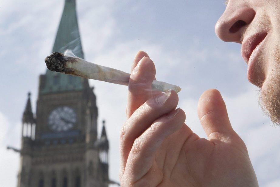 Au sujet de la lutte contre la marijuana,... (Photo: Pawel Dwulit, Archives PC)