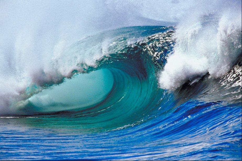 L'acidification est une menace importante pour l'écosystème marin... (Photos.com)