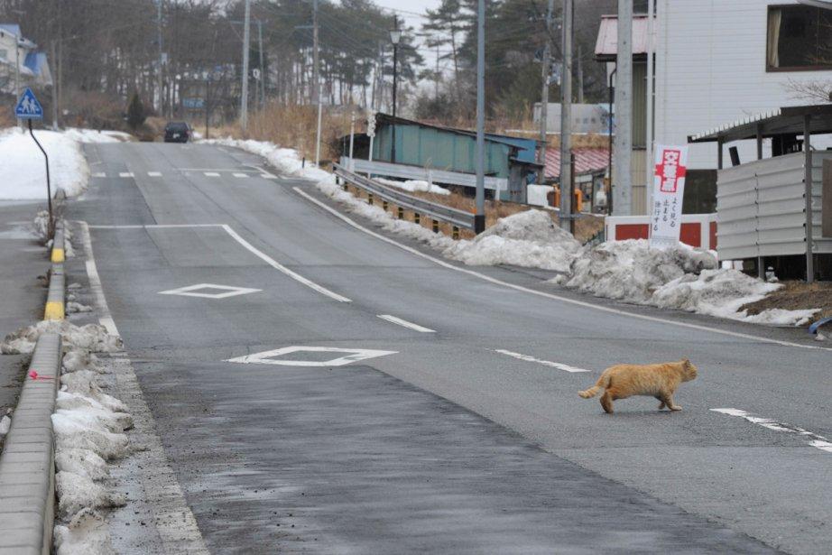 Parfois le silence de cette bourgade recouverte de... (Photo Toru Yamanaka, AFP)