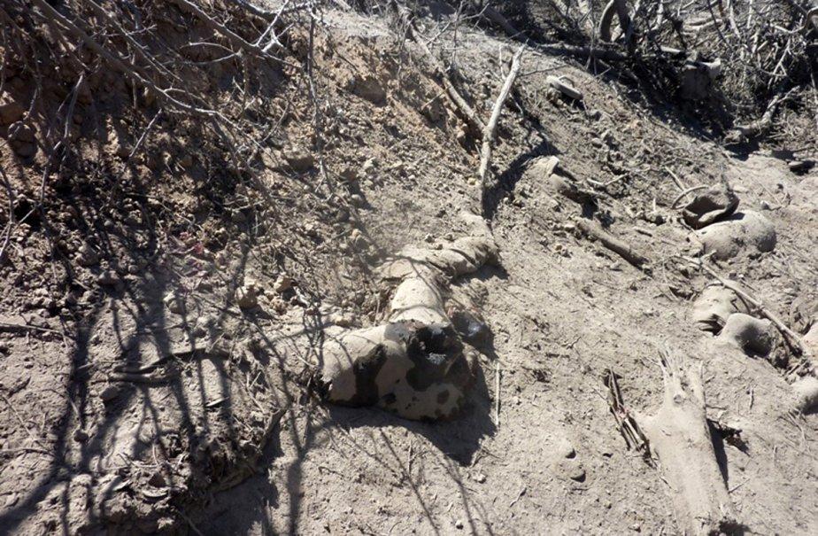 Le corps d'un membre d'Al-Qaïda est retrouvé dans... (Photo: AFP)