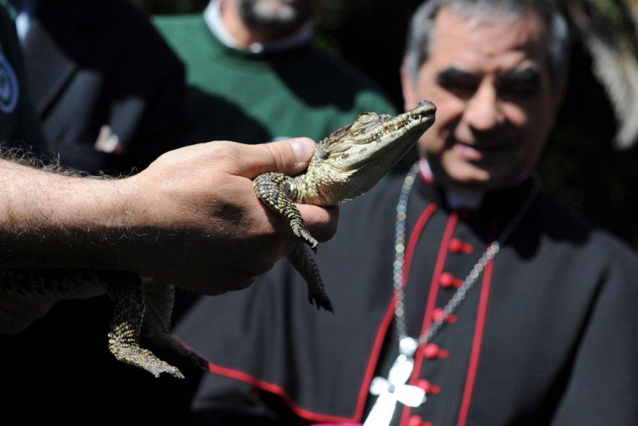 Le substitut à la secrétairerie d'État, Mgr Giovanni... (Photo: TIZIANA FABI, AFP)