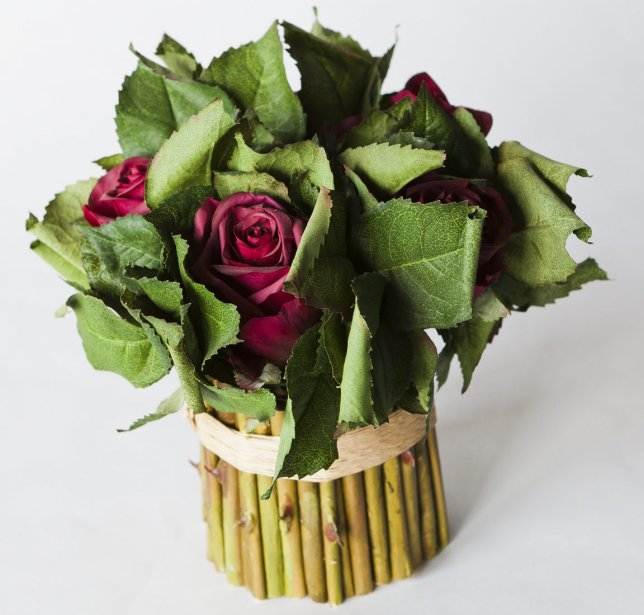 Bouquet de roses, 44,95$, Scrupule, 1290, rue Fleury Est. | 16 mars 2012