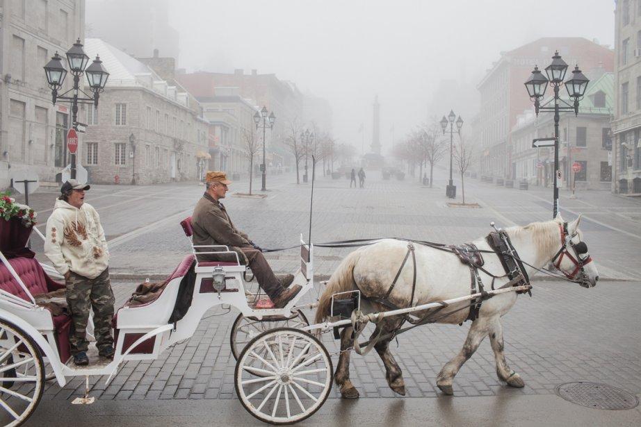 L'épais manteau de brouillard... (Photo : Edouard Plante-Fréchette, La Presse)