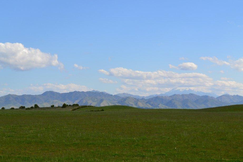 Dans le domaine Yealands, à Blenheim, l'un des plus vastes... | 2012-03-26 00:00:00.000