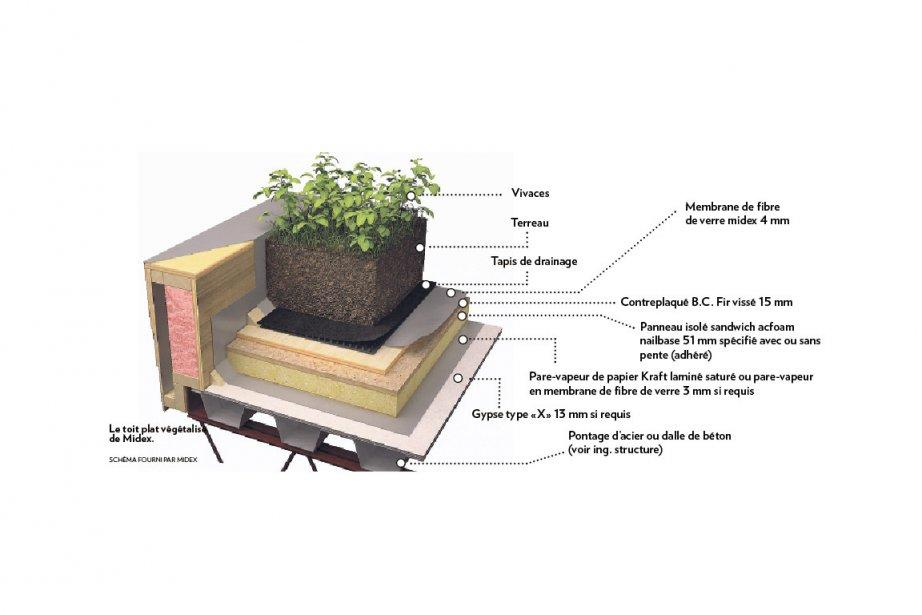 Le toit plat végétalisé de Midex.... (Schéma fourni par Midex)