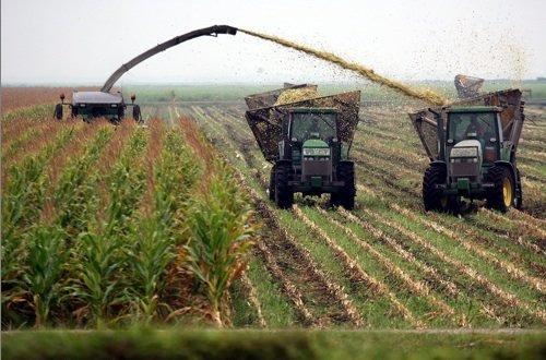 Mettre dos-à-dos les pratiques agricoles biologiques et conventionnelles... (Photothèque Le Soleil)