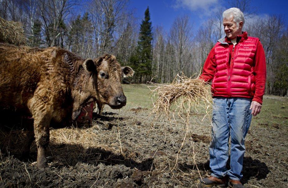 John Bastian élève des animaux sans antibiotiques depuis... (Photo Marco Campanozzi, La Presse)