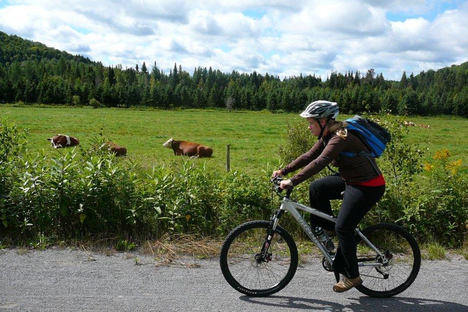 Le Véopiste Jacques-Cartier-Portneuf combine paysages agricoles, immersion en... (Photo fournie par le vélopiste JCP)