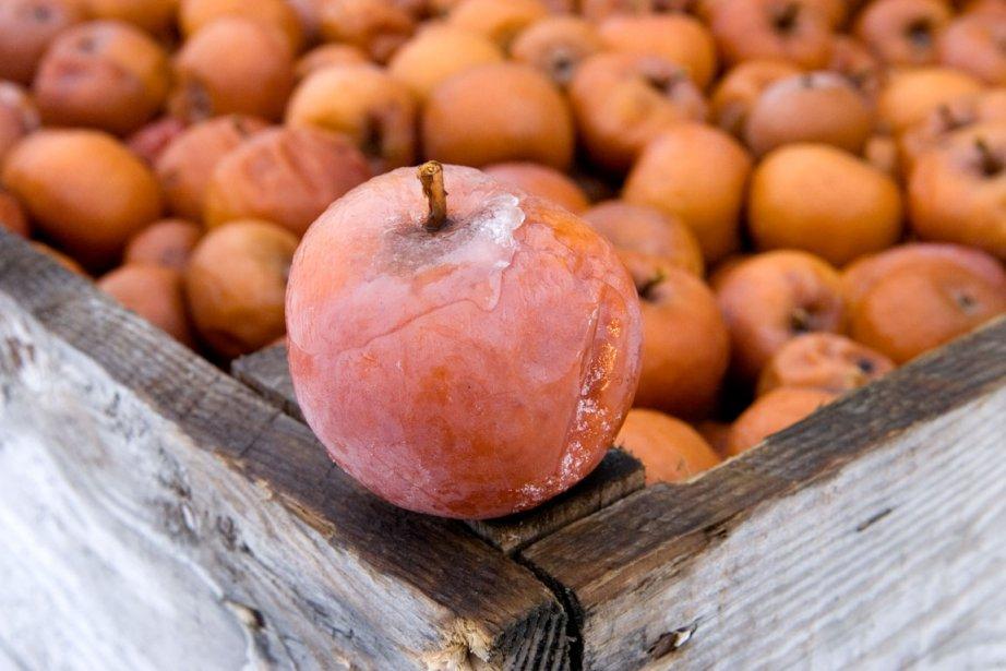 Ce fruit OGM a été développé par l'entreprise... (Photothèque Le Soleil)