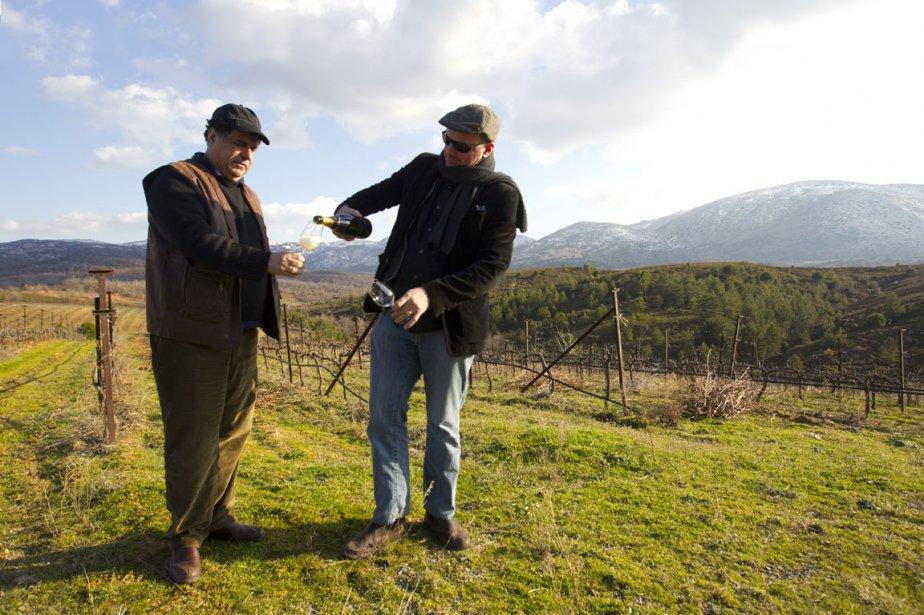 Le vigneron Yiannis Tselepos et l'importateur montréalais Theo Diamantis dégustent la cuvée Amalia brut dans le vignoble du Péloponnèse. (Photo François Roy, La Presse)