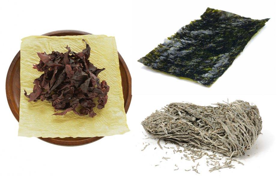 À gauche, l'algue petit goémon ou dulse, en... (Photos Ninon Pednault, La Presse)