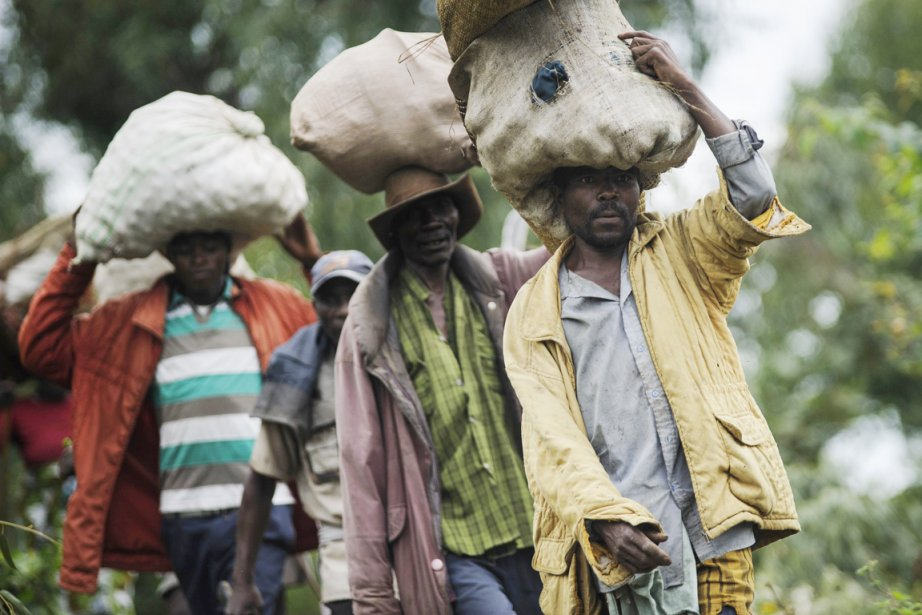 Des Congolais quittent la ville de Bunagana dans... (Photo: Phil Moore, Archives AFP)