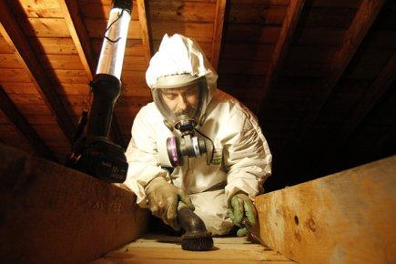 Amiante dans les maisons des r novations toxiques for Amiante dans maison