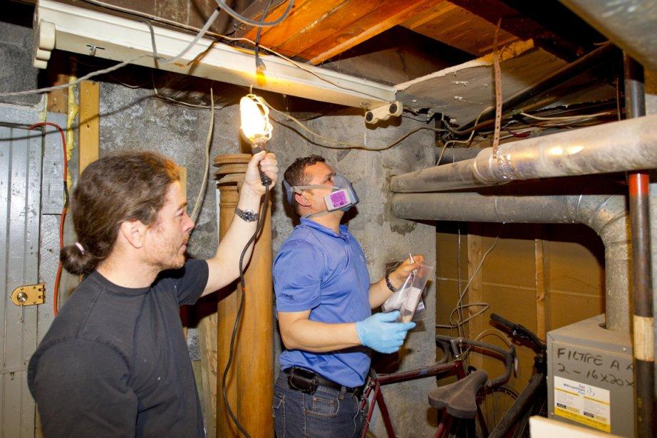 Inspection d'un sous-sol par un expert.... (Photo Alain Roberge, La Presse)