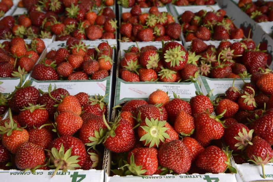 Avec une faible consommation de  fruits et... (Photo Bernard Brault, La Presse)