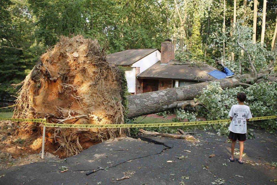 Un arbre déraciné par l'orage, en Virginie.... (Photo: AFP)