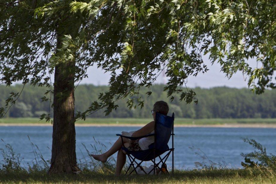 Une dame lit sous l'ombre des arbres du... (Photo: HUGO-SÉBASTIEN AUBERT, La Presse)