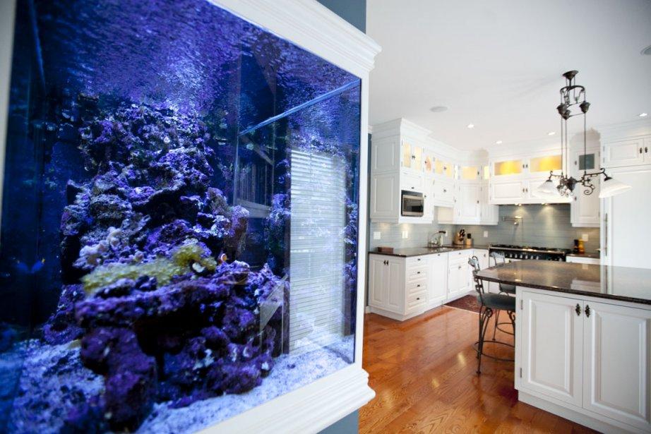 maison de ville de 5500 pieds carr s dans saint laurent marie andr e amiot maisons de luxe. Black Bedroom Furniture Sets. Home Design Ideas