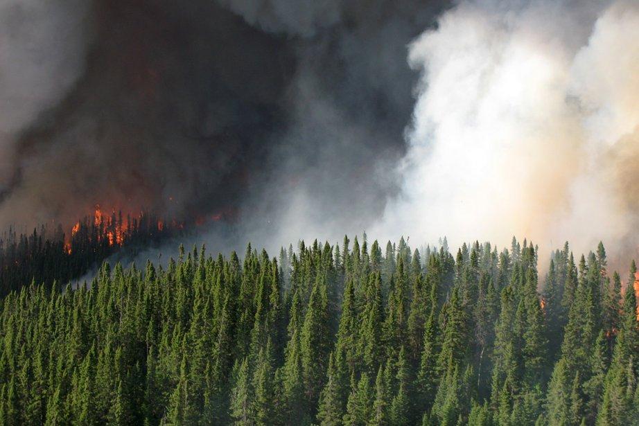 L'interdiction de faire des feux à ciel ouvert... (Photo: archives Le Quotidien)