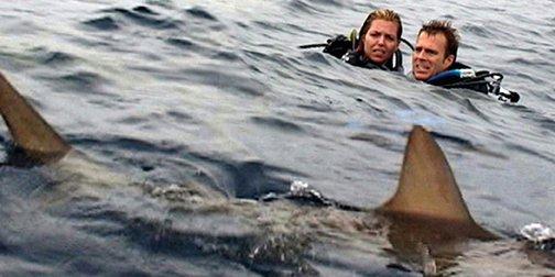 Une importante opération de sauvetage en mer a été lancée au... (Lions Gate)