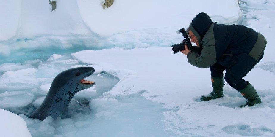Jean Lemire capte en photo un phoque léopard.... (François Prévost)