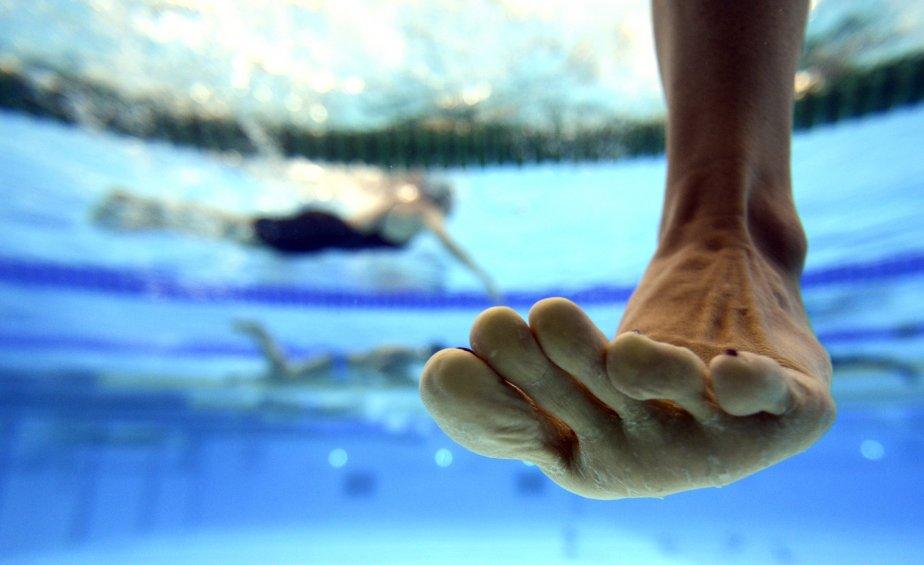 De mon point de vue inhabituel (une vitre sous l'eau), j'ai pu observer l'entraînement des nageurs en matinée à la piscine olympique. Tout à coup, un pied d'une nageuse s'est présenté devant moi, donnant un air cocasse à ma première carte postale des Jeux. > Nikon D4, zoom 14-24mm F2,8 ; 1/1600 F2,8 ; 1250 ISO | 27 juillet 2012