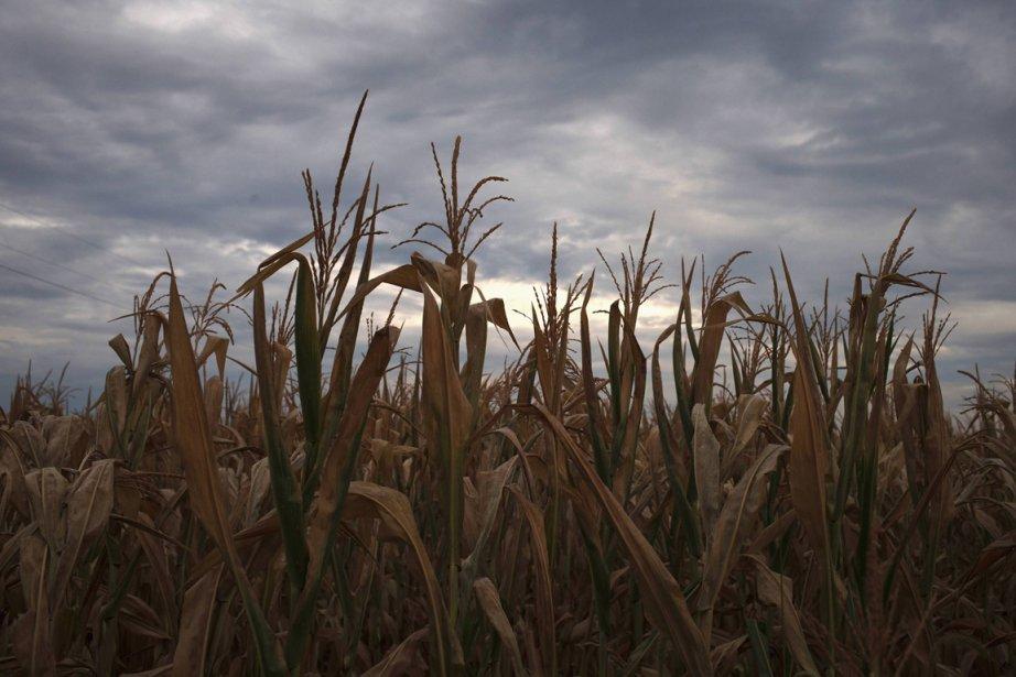viron la moitié des particules d'aérosols en Amérique... (Photo Reuters)