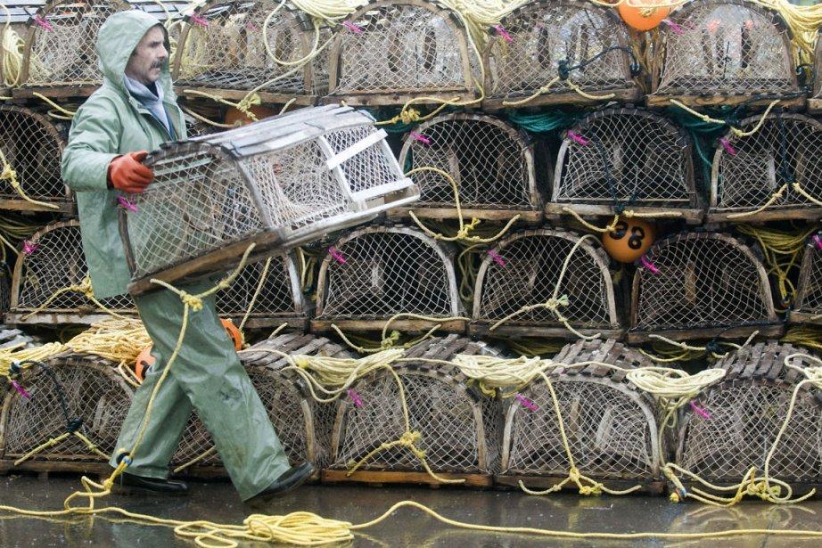 La tension monte entre les pêcheurs de homards... (PHOTO LA PRESSE CANADIENNE)