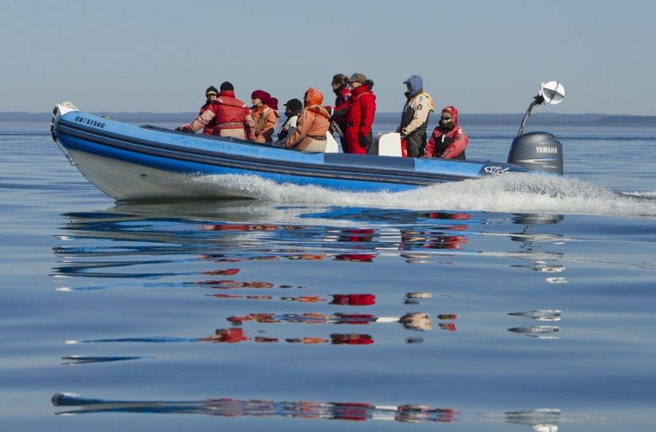 À la recherche de baleines à Longue-Pointe-de-Mingan. | 6 août 2012