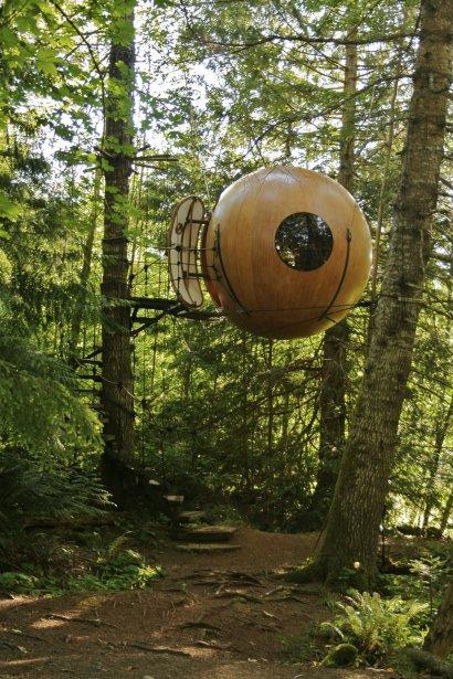 Dans l'île de Vancouver, à 200 km de Victoria, un... | 2012-08-08 00:00:00.000