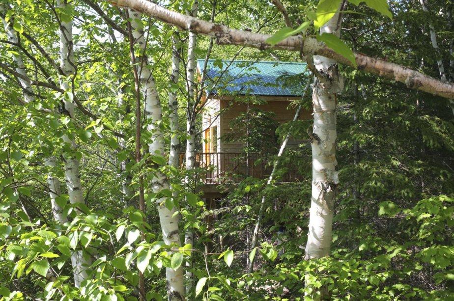 Avec son joli sentier et ses trois ruisseaux, la forêt du domaine Canopée Lit est charmante. La nuit, les lucioles clignotent au creux des herbes. Le jour, les lièvres détalent devant les randonneurs. À L'Anse-de-Roche, six cabanes sur pilotis entourées de terrasses regardent aujourd'hui vers le fjord du Saguenay. | 8 août 2012