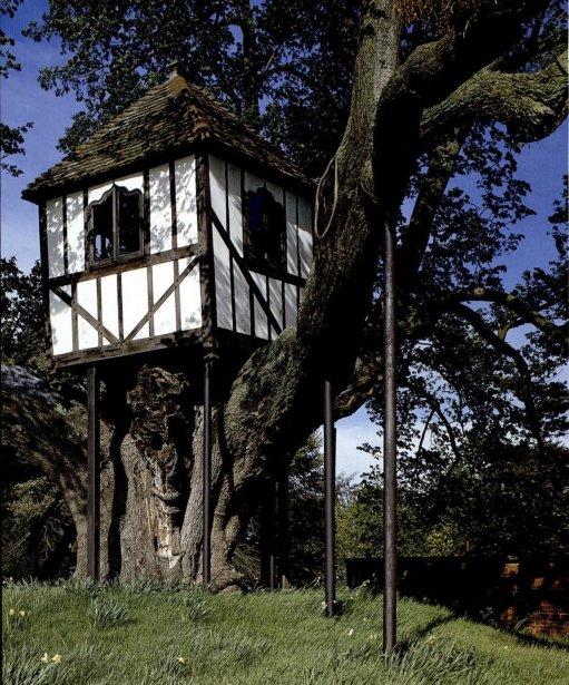 Une maison de style Tudor se dresse depuis plus de 300 ans dans un tilleul trois fois plus vieux. On peut l'admirer à Pitchford Hall, dans le Midland anglais. En 1832, alors adolescente, la reine Victoria y est monté et a relaté son expérience dans son journal intime. | 8 août 2012