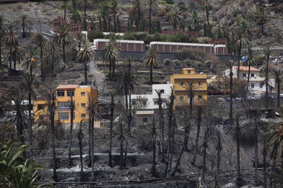 Valle Gran Rey après les incendies. Un quart... (Photo Desiree Marin, AFP)