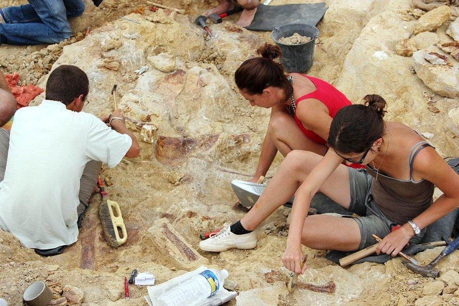 Des paléontologues nettoient les restes fossilisés du nouveau... (Photo: AFP)